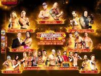 Остальные виды спорта: WrestleMania 26