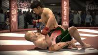 Остальные виды спорта: Какое единоборство подходит лучше всего в качестве базы для выступления в MMA