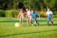 Остальные виды спорта: Смены состава