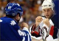 Остальные виды спорта: Нужны драки в хоккее