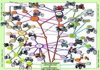Остальные виды спорта: Мотоцикла ради