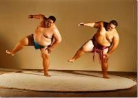 Остальные виды спорта: КЛАССИКА ИЛИ СУМО