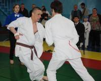 Остальные виды спорта: Кекусин  сильнейшее каратэ Немного истории   Опрос