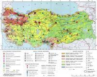 Остальные виды спорта: Разница между турецкими и русскими девушками    из интернета