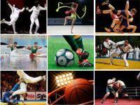 Остальные виды спорта: Календарь на 2011 год