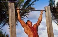 Остальные виды спорта: ваши вопросы  по турнику штанге и развитию силы мышц