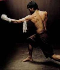 Остальные виды спорта: Нужен ли в савате третий дополнительный раздел  где будут разрешены удары голенью  коленом и локтем