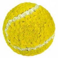Новости тенниса: За что вы любите Машу