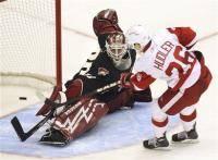 Новости хоккея: Самая большая потеря