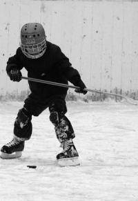 Новости хоккея: В каком городе вы живете и за какую команду играете