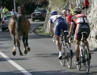 Велоспорт: Погрязнение  Из ряда вон