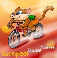 Велоспорт: Дни рождения постояльцев