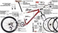 Велоспорт: велосипидерная снаряга