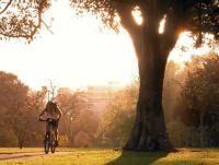 Велоспорт: спрятанные от нехороших людей места катания и отдыха