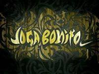 Новости футбола: JOGA BONITO LEAGUE     16 ТУР    8
