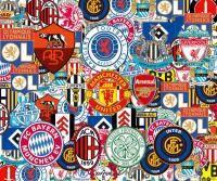 Новости футбола: За какой клуб вы болеете  6