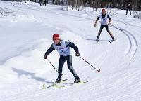 Зимние виды спорта: КОНЕК ИЛИ КЛАССИКА ваш любимый лыжный ход