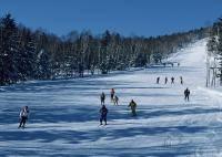 Зимние виды спорта: Кто лучше катается