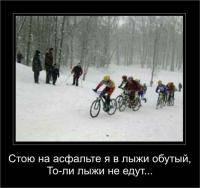 Зимние виды спорта: Вы считаете идею конструктивной