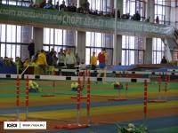Легкая атлетика: Нижний Новгород