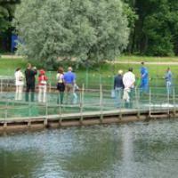 Водные виды спорта: подвоху на карпа