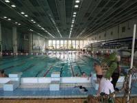 Водные виды спорта: Плавание и учеба