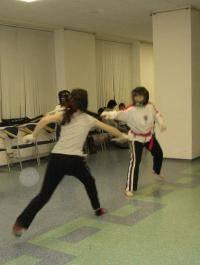 Единоборства: Обучение фехтовальщицы