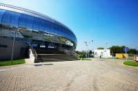 Единоборства: Рой Джонс мл  VS  Денис Лебедев 21 мая Дворец спорта Динамо в Крылатском