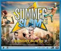 Единоборства: WWE Summer Slam 2011