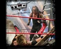 Единоборства: WWE  TLC  Tables  Ladders   Chairs 2010