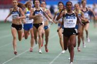Единоборства: Повышает ли бег на длинные дистанции выносливость в борьбе