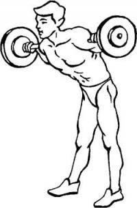 Единоборства: Какие упражнения со штангой или гантелями развивают сильный прямой удар