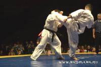 Единоборства: самбоспортивное vs киокушенкай карате