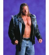 Единоборства: бизнес Triple H