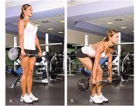Фитнес и бодибилдинг: Травма позвоночника  не могу делать присед и становую  но хочу хороший бицепс