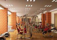 Фитнес и бодибилдинг: Оздоравливающий массаж   Подарите себе красоту и здоровье