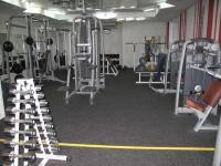 Фитнес и бодибилдинг: Грубая сила или красивая мускулатура
