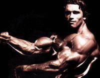 Фитнес и бодибилдинг: Сколько массы вы набрали