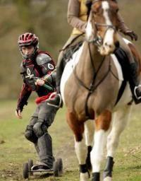 Экстремальные виды спорта: Занятия верховой ездой